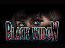 В мобильном казино автомат Черная Вдова